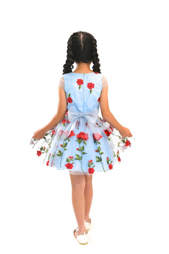 blue rose dress11